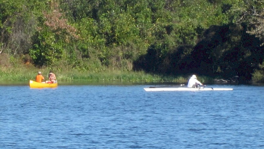 From Canoe on Lake - Picture of Cypress Cove Nudist Resort