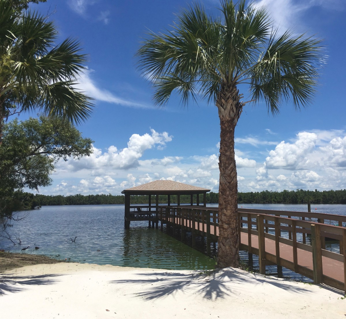 Relax at the Lakefront - Picture of Cypress Cove Nudist